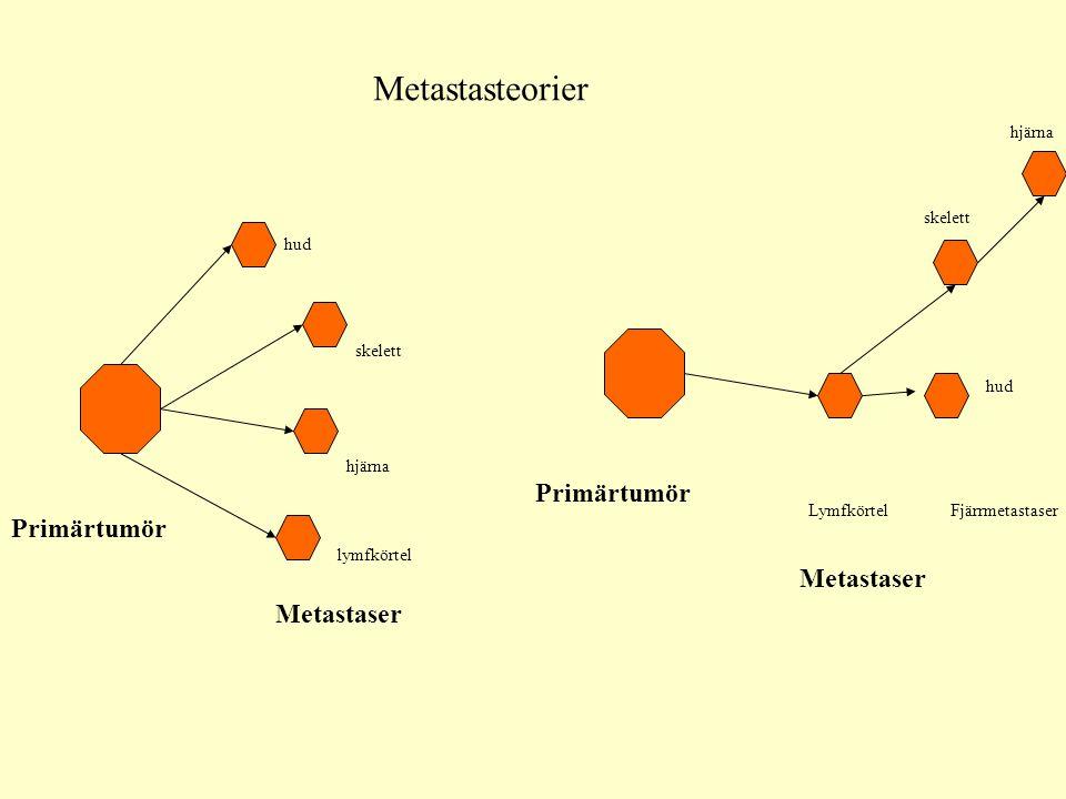 Tumörcellen Cellcykel i regel ej kortare utan lika eller lite längre än normalvävnaden Fler celler kan dock vara inne i cykel, färre i G 0 DNA reparationen kan vara sämre