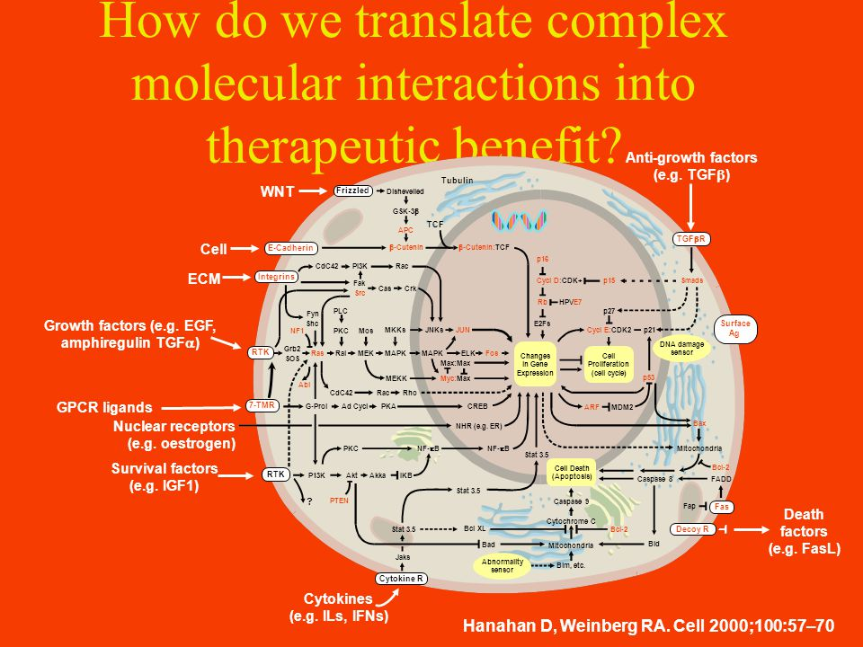 How do we translate complex molecular interactions into therapeutic benefit.