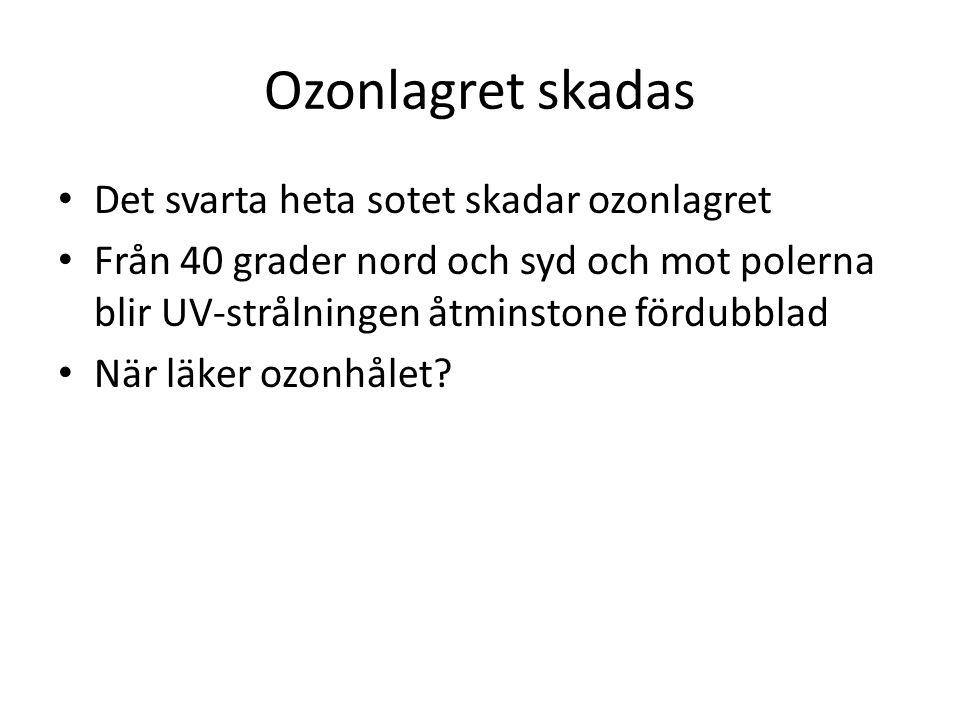 Ozonlagret skadas Det svarta heta sotet skadar ozonlagret Från 40 grader nord och syd och mot polerna blir UV-strålningen åtminstone fördubblad När lä
