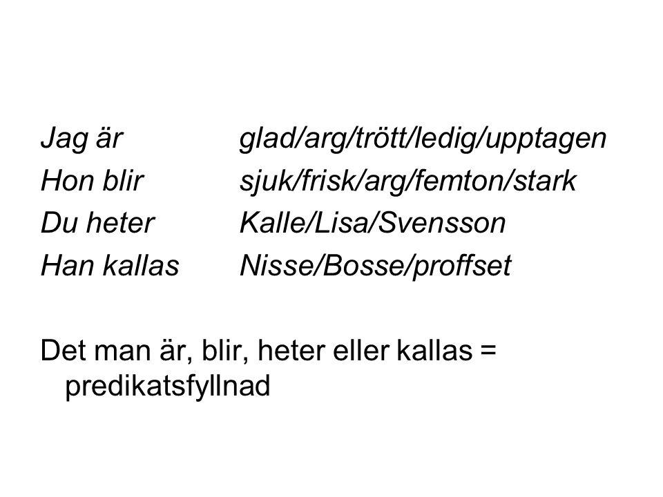 Jag är glad/arg/trött/ledig/upptagen Hon blir sjuk/frisk/arg/femton/stark Du heter Kalle/Lisa/Svensson Han kallas Nisse/Bosse/proffset Det man är, bli