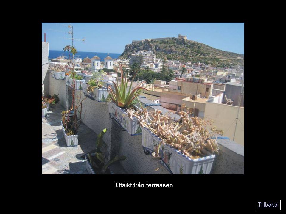 Tillbaka Utsikt från terrassen