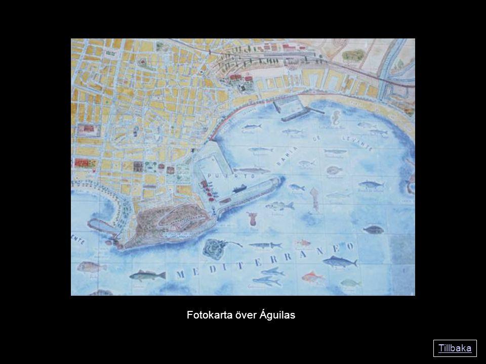Tillbaka Fotokarta över Águilas
