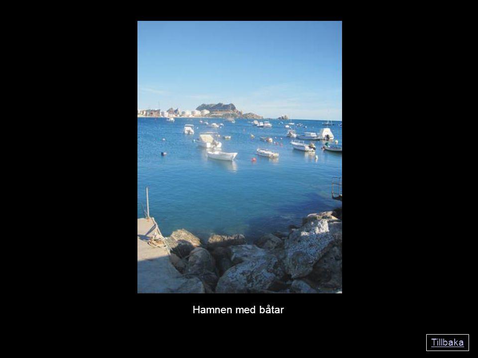 Tillbaka Hamnen med båtar