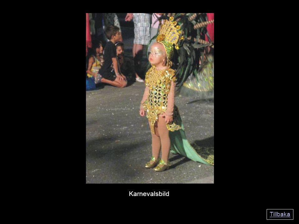 Tillbaka Karnevalsbild