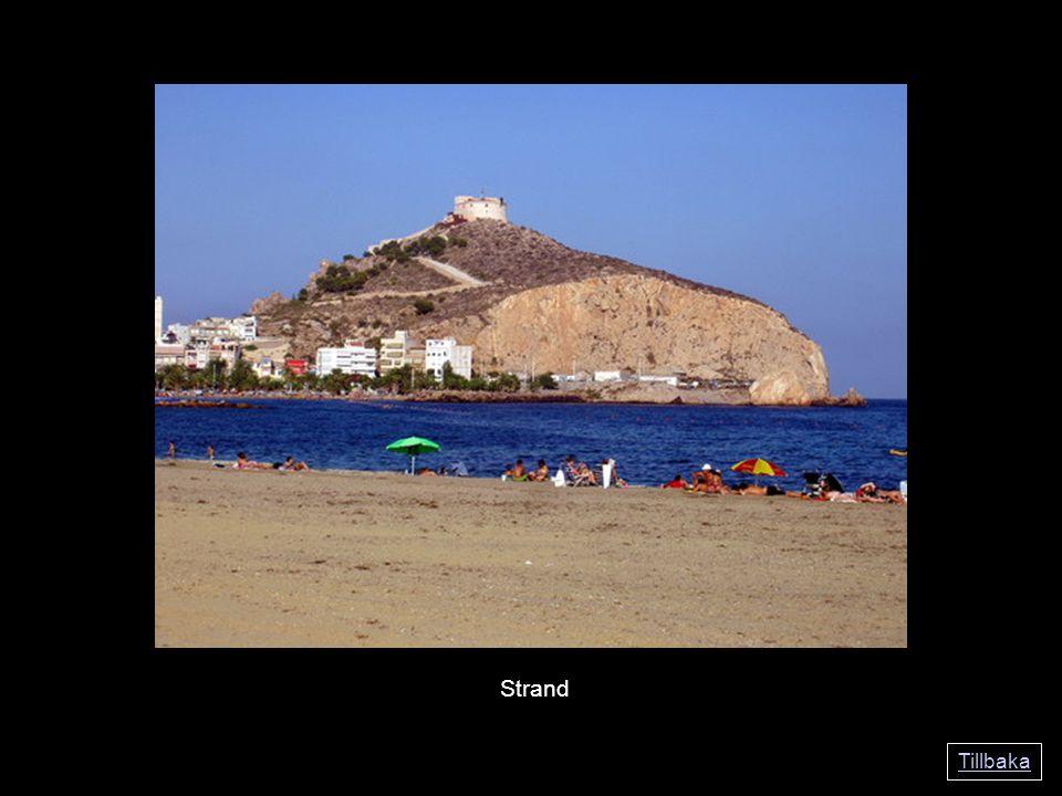 Tillbaka Strand