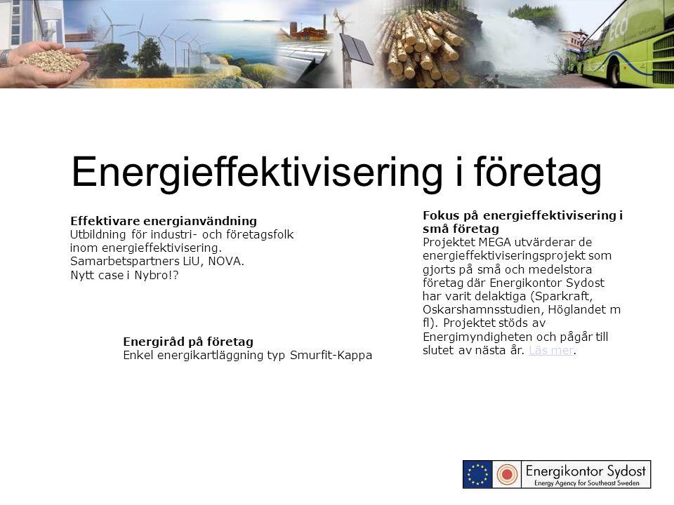 Energieffektivisering i företag Fokus på energieffektivisering i små företag Projektet MEGA utvärderar de energieffektiviseringsprojekt som gjorts på