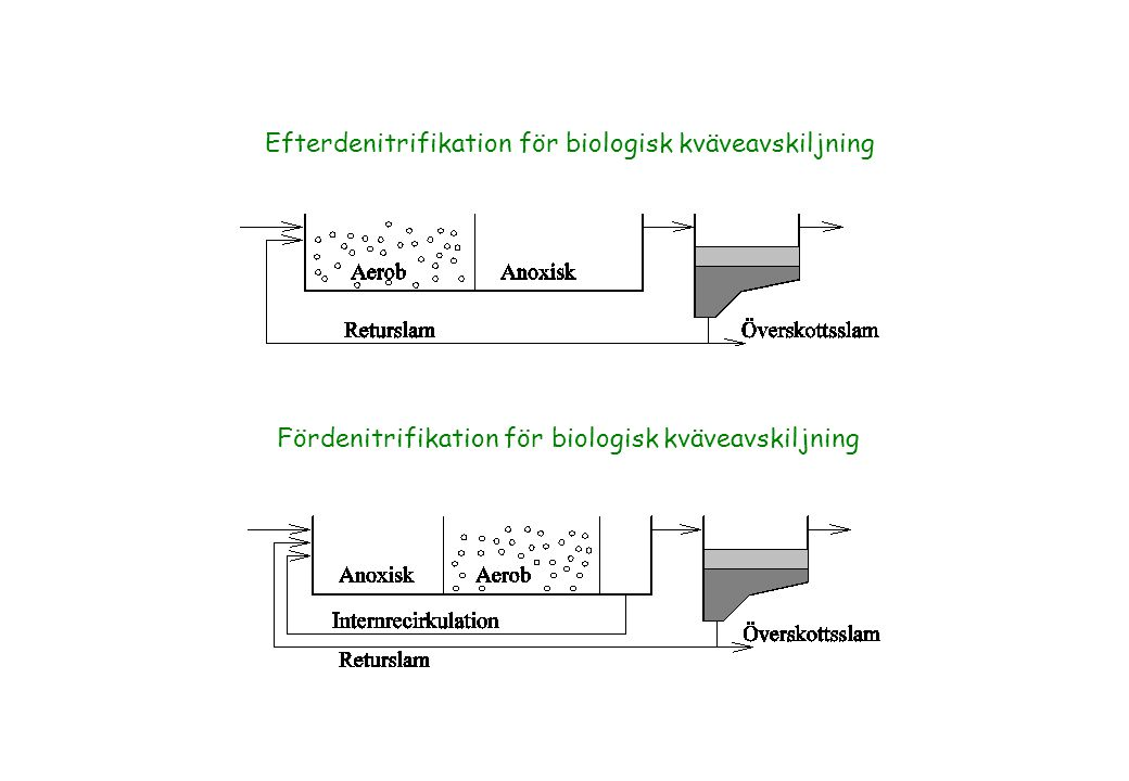 Anoxic Ammonia Oxidation: Anammox Uncharacterized organisms from wastewater treatment or nitrate rich sludge have beeen shown to oxidize ammonia to N 2 (1995).
