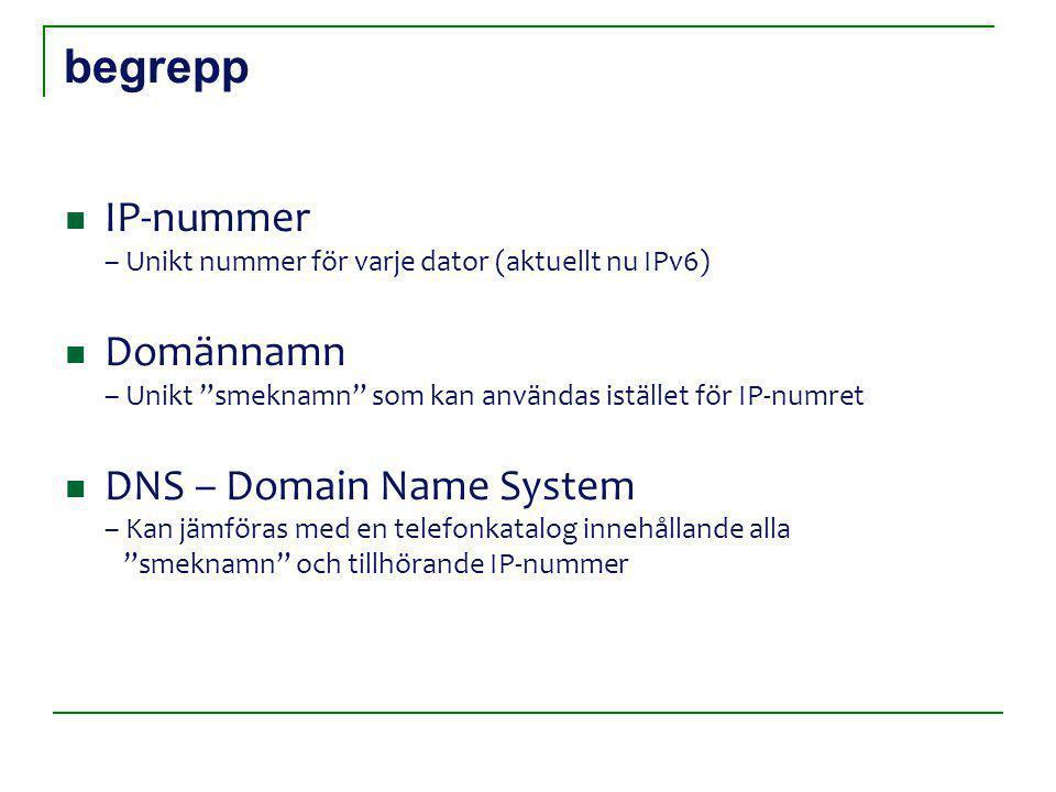 begrepp IP-nummer – Unikt nummer för varje dator (aktuellt nu IPv6) Domännamn – Unikt smeknamn som kan användas istället för IP-numret DNS – Domain Name System – Kan jämföras med en telefonkatalog innehållande alla smeknamn och tillhörande IP-nummer