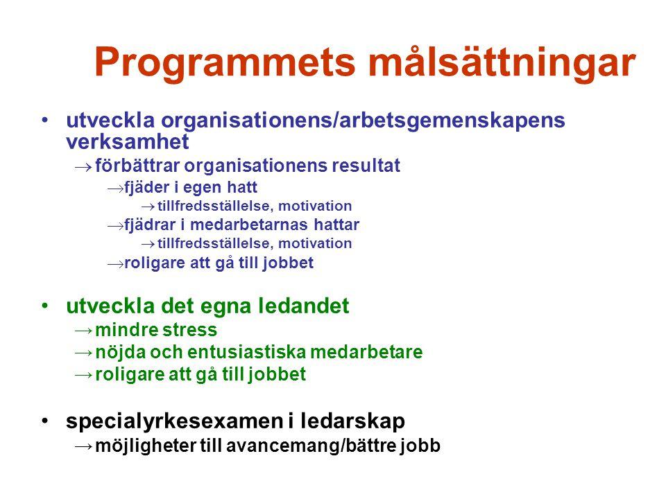 Programmets målsättningar utveckla organisationens/arbetsgemenskapens verksamhet  förbättrar organisationens resultat  fjäder i egen hatt  tillfred
