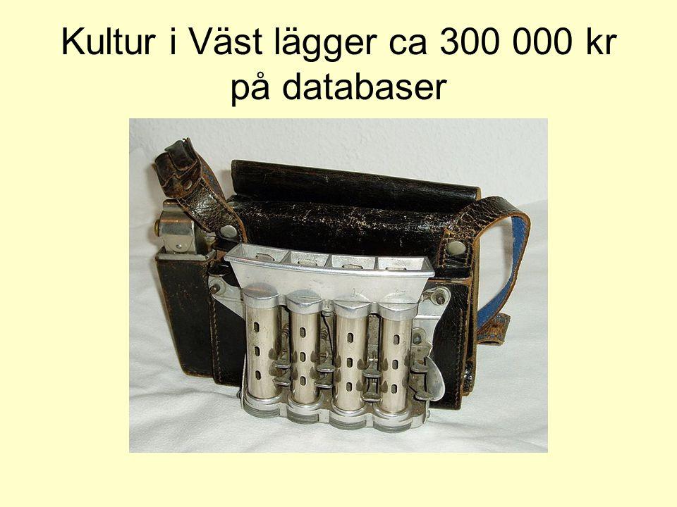 Kultur i Väst lägger ca 300 000 kr på databaser