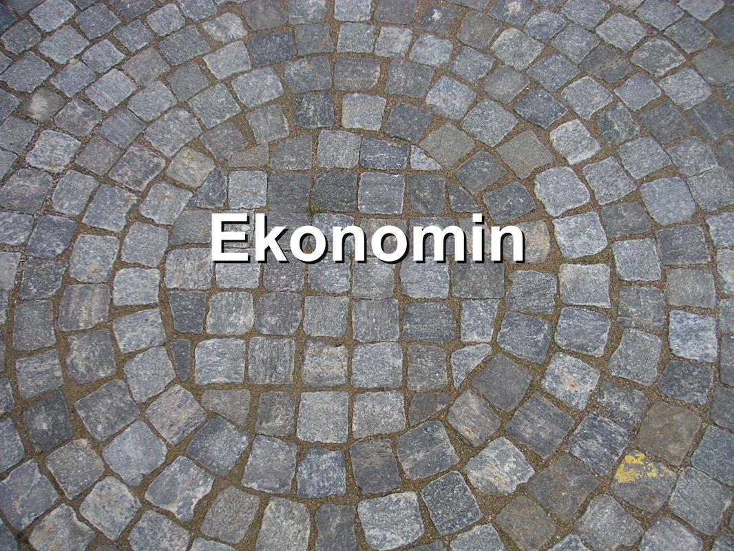 Ekonomin
