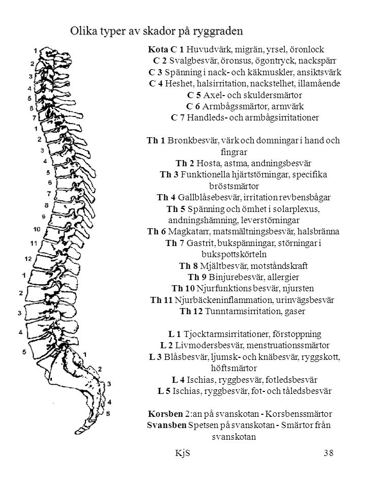 KjS38 Kota C 1 Huvudvärk, migrän, yrsel, öronlock C 2 Svalgbesvär, öronsus, ögontryck, nackspärr C 3 Spänning i nack- och käkmuskler, ansiktsvärk C 4