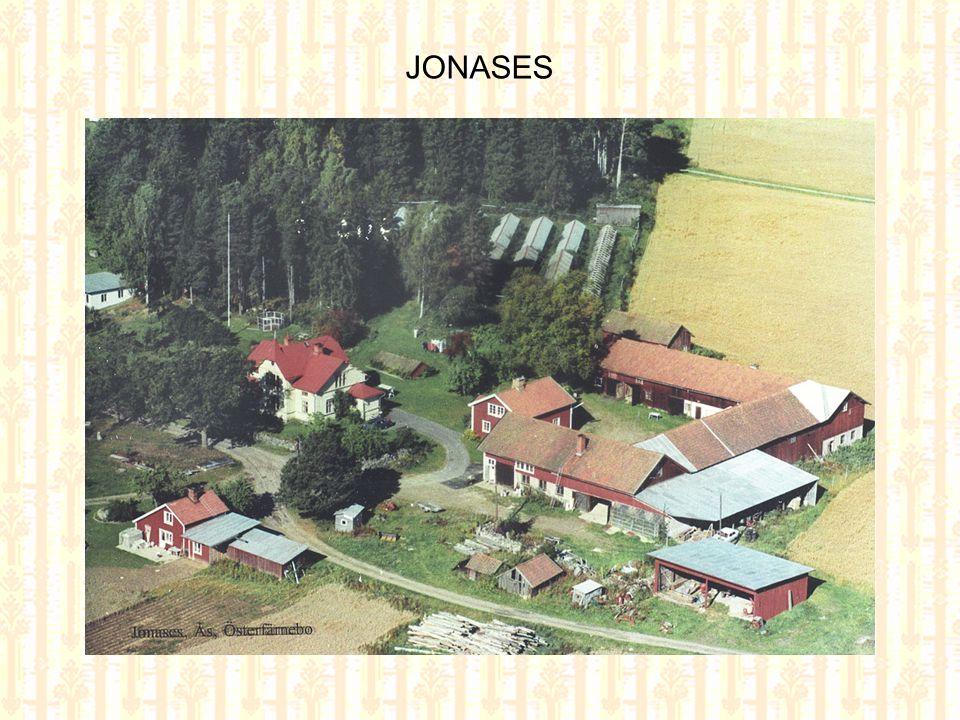 Jonases 2004 Jonases 1956