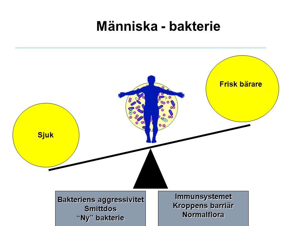 """Människa - bakterie Sjuk Frisk bärare Bakteriens aggressivitet Smittdos """"Ny"""" bakterie Immunsystemet Kroppens barriär Normalflora"""