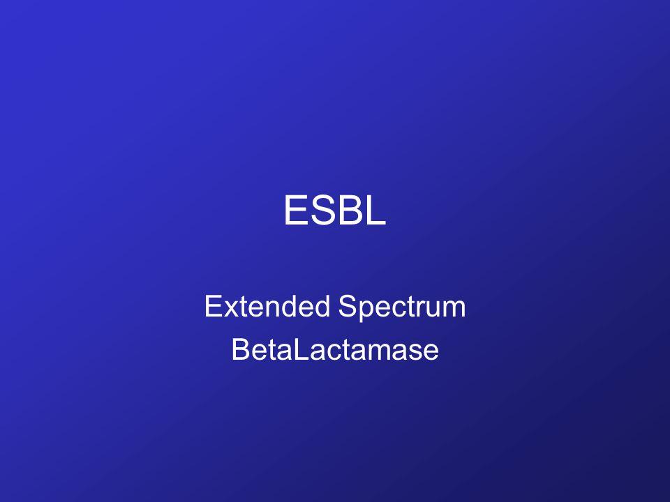 ESBL Extended Spectrum BetaLactamase