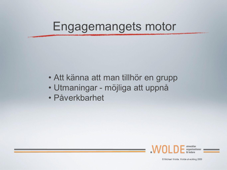 Engagemangets motor Att känna att man tillhör en grupp Utmaningar - möjliga att uppnå Påverkbarhet © Michael Wolde, Wolde utveckling 2009