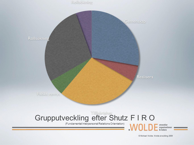 Grupputveckling efter Shutz F I R O (Fundamental Interpersonal Relations Orientation)