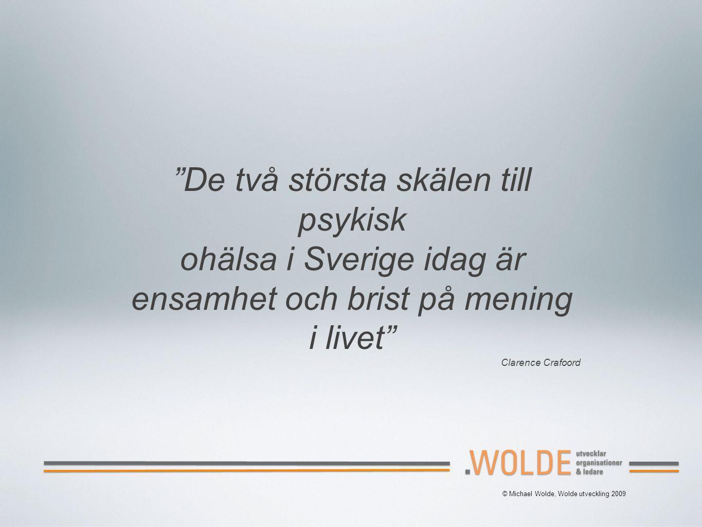 © Michael Wolde, Wolde utveckling 2009 De två största skälen till psykisk ohälsa i Sverige idag är ensamhet och brist på mening i livet Clarence Crafoord
