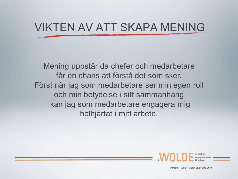 © Michael Wolde, Wolde utveckling 2009 VIKTEN AV ATT SKAPA MENING Mening uppstår då chefer och medarbetare får en chans att förstå det som sker. Först