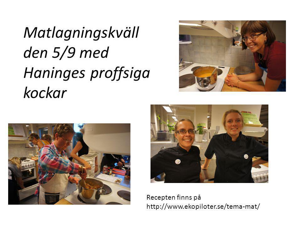 Matlagningskväll den 5/9 med Haninges proffsiga kockar Recepten finns på http://www.ekopiloter.se/tema-mat/