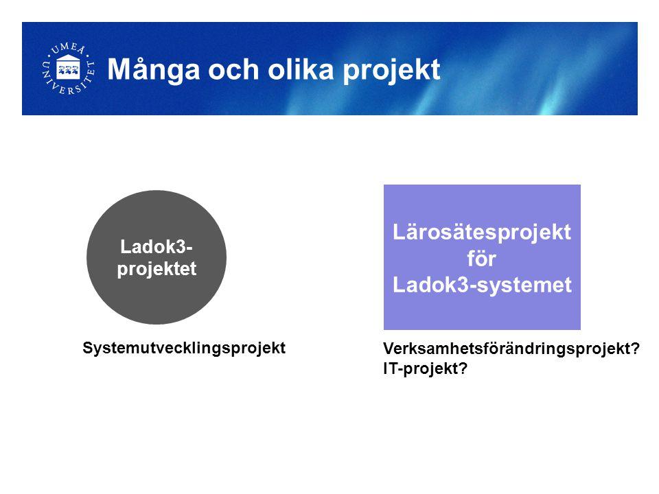 Många och olika projekt Ladok3- projektet Lärosätesprojekt för Ladok3-systemet Systemutvecklingsprojekt Verksamhetsförändringsprojekt? IT-projekt?