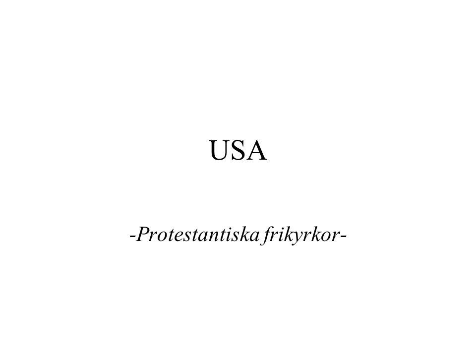 USA -Protestantiska frikyrkor-