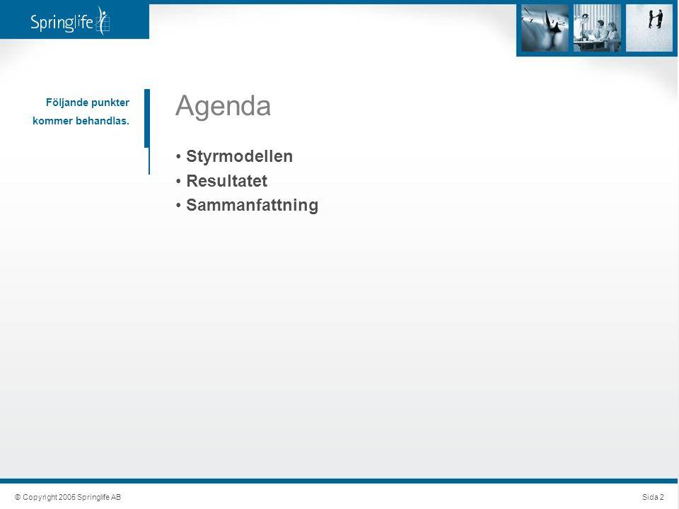 Följande punkter kommer behandlas. Agenda Styrmodellen Resultatet Sammanfattning © Copyright 2005 Springlife ABSida 2