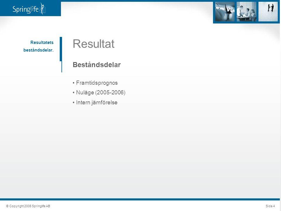 © Copyright 2005 Springlife ABSida 4 Resultat Resultatets beståndsdelar. Beståndsdelar Framtidsprognos Nuläge (2005-2006) Intern jämförelse