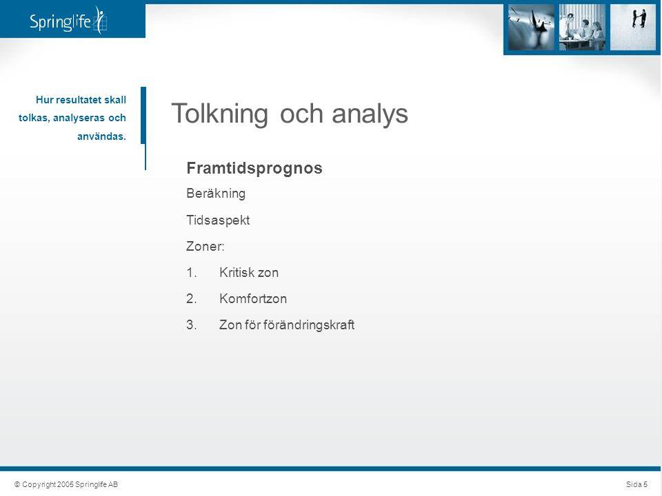 © Copyright 2005 Springlife ABSida 5 Tolkning och analys Hur resultatet skall tolkas, analyseras och användas. Framtidsprognos Beräkning Tidsaspekt Zo