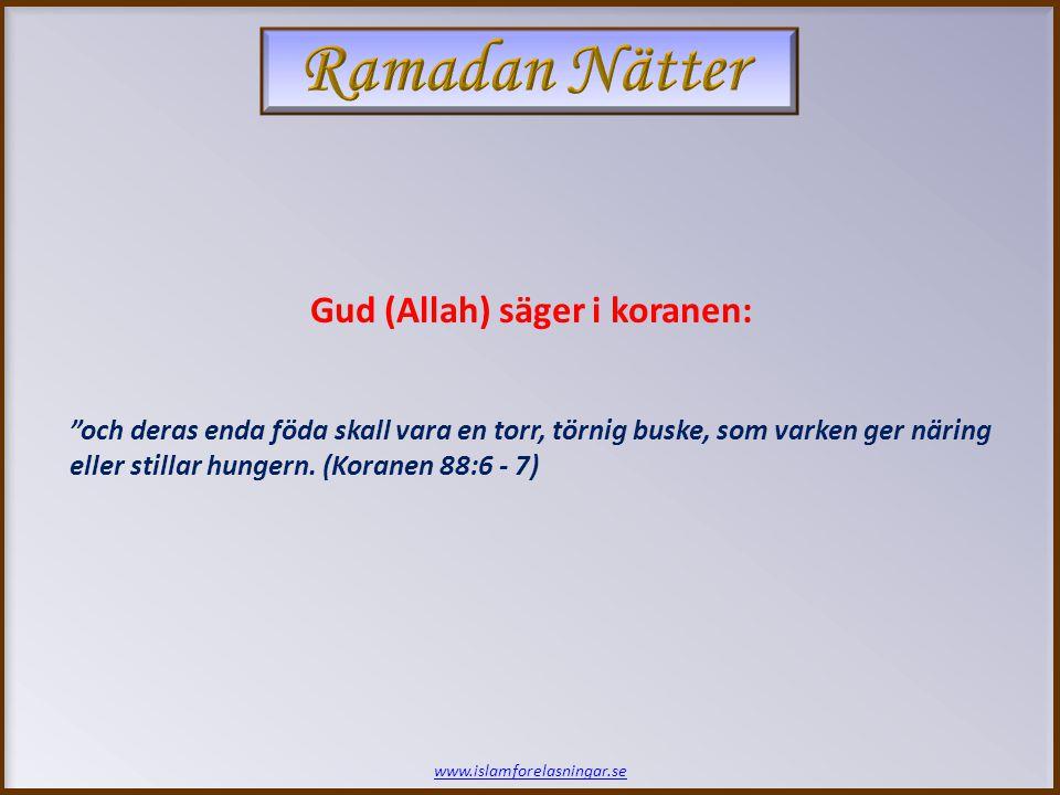 www.islamforelasningar.se och deras enda föda skall vara en torr, törnig buske, som varken ger näring eller stillar hungern.