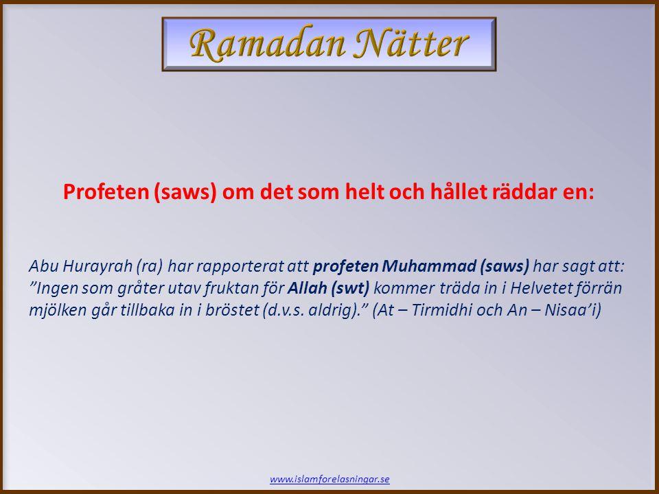 www.islamforelasningar.se Tjugofjärde Natten SLUT!