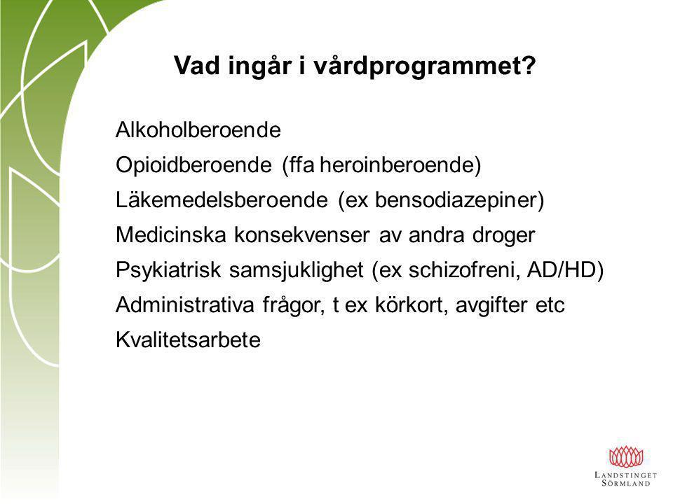 Vad ingår i vårdprogrammet.