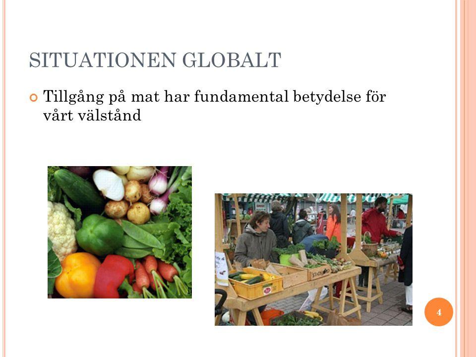 SITUATIONEN GLOBALT Tillgång på mat har fundamental betydelse för vårt välstånd 4