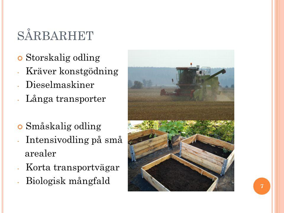 SÅRBARHET Storskalig odling - Kräver konstgödning - Dieselmaskiner - Långa transporter Småskalig odling - Intensivodling på små arealer - Korta transportvägar - Biologisk mångfald 7