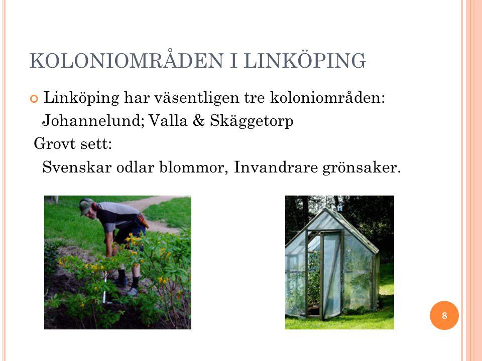 KOLONIOMRÅDEN I LINKÖPING Linköping har väsentligen tre koloniområden: Johannelund; Valla & Skäggetorp Grovt sett: Svenskar odlar blommor, Invandrare grönsaker.