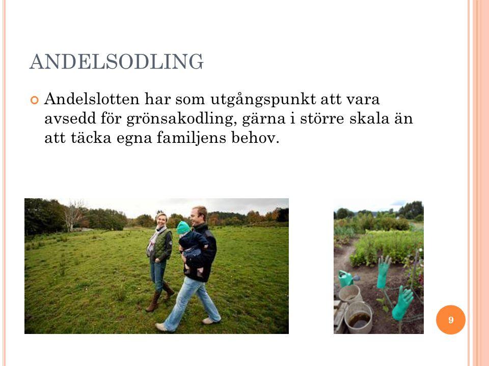 NÅGOT OM OMSTÄLLNINGSRÖRELSEN Internationell rörelse med ca 100 grupper i Sverige.