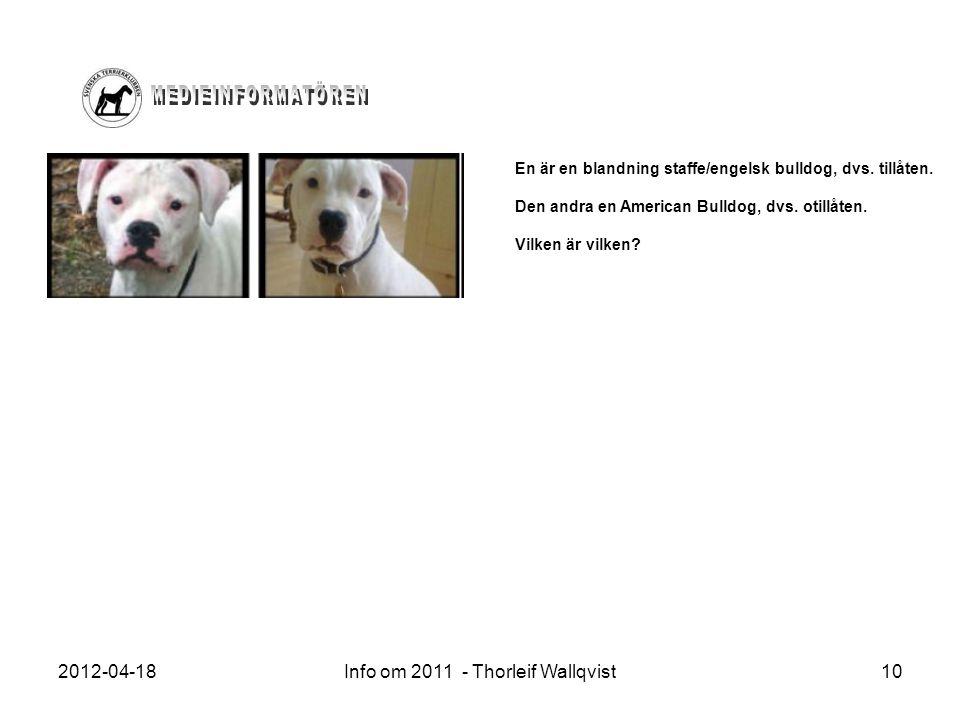 2012-04-18Info om 2011 - Thorleif Wallqvist10 En är en blandning staffe/engelsk bulldog, dvs. tillåten. Den andra en American Bulldog, dvs. otillåten.