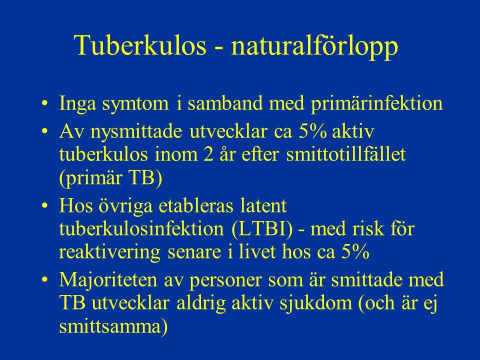 Tuberkulos - naturalförlopp Inga symtom i samband med primärinfektion Av nysmittade utvecklar ca 5% aktiv tuberkulos inom 2 år efter smittotillfället