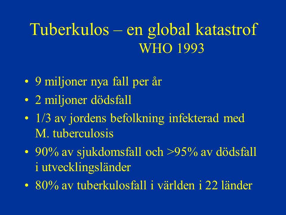 Tuberkulos – en global katastrof WHO 1993 9 miljoner nya fall per år 2 miljoner dödsfall 1/3 av jordens befolkning infekterad med M. tuberculosis 90%