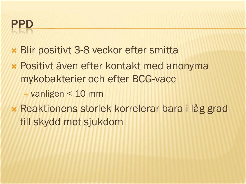  Blir positivt 3-8 veckor efter smitta  Positivt även efter kontakt med anonyma mykobakterier och efter BCG-vacc  vanligen < 10 mm  Reaktionens st