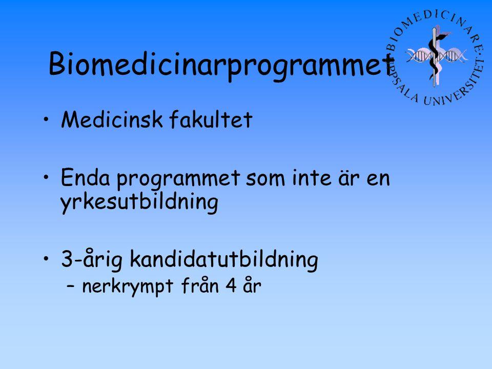Biomedicinarprogrammet Medicinsk fakultet Enda programmet som inte är en yrkesutbildning 3-årig kandidatutbildning –nerkrympt från 4 år
