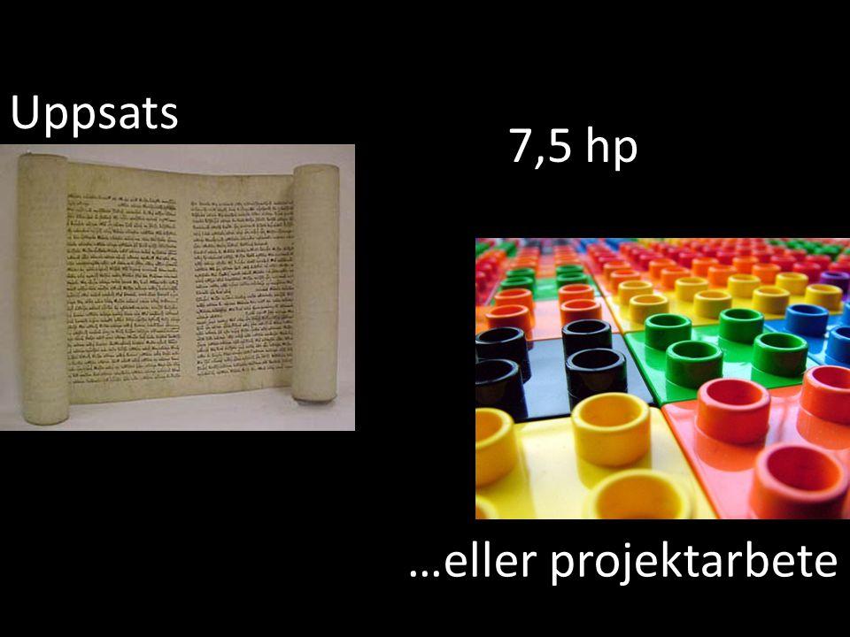 Livsfilosofi och det moderna samhället 7,5 hp