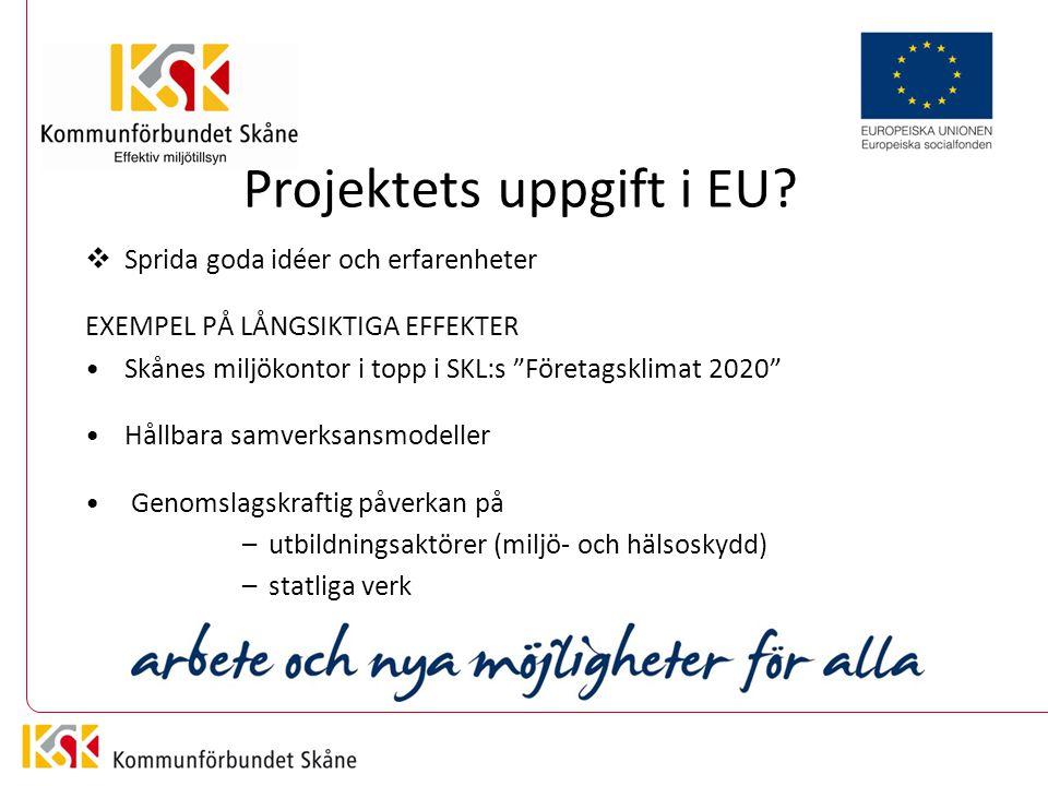 Projektets uppgift i EU.