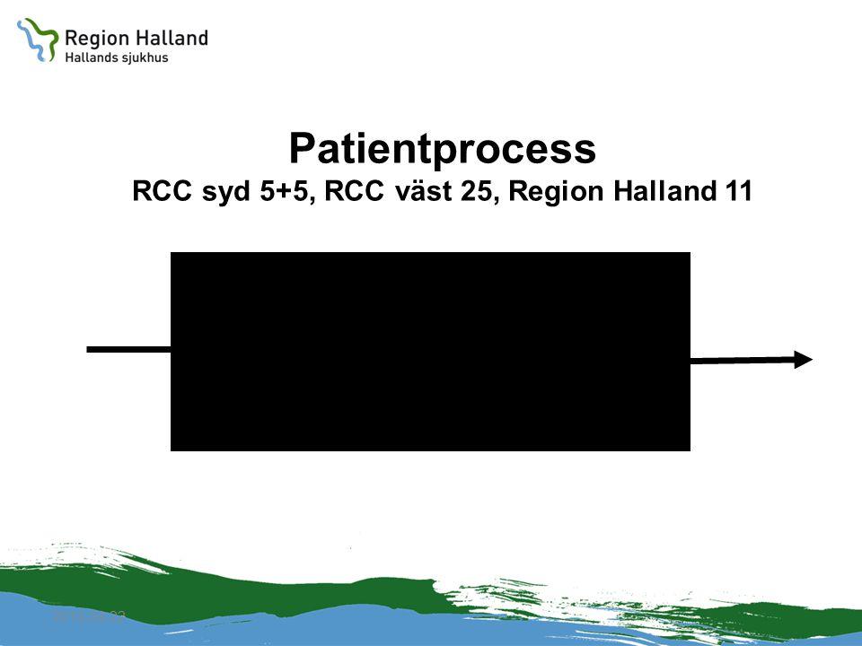 2010-04-22 Patientprocess RCC syd 5+5, RCC väst 25, Region Halland 11
