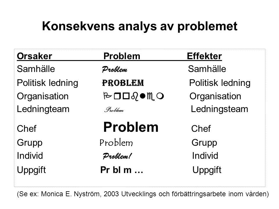 Konsekvens analys av problemet Orsaker Problem Effekter Samhälle Problem Samhälle Politisk ledning Problem Politisk ledning Organisation  Organi