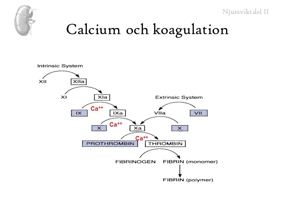 Njursvikt del II Calcium och koagulation Ca ++