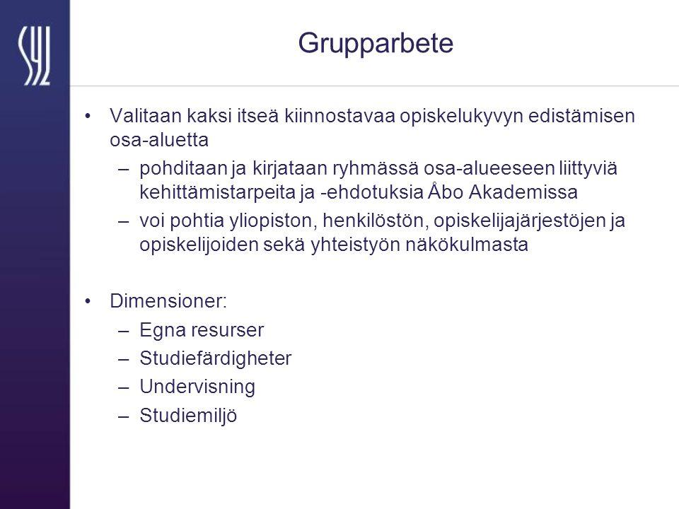 Grupparbete Valitaan kaksi itseä kiinnostavaa opiskelukyvyn edistämisen osa-aluetta –pohditaan ja kirjataan ryhmässä osa-alueeseen liittyviä kehittämistarpeita ja -ehdotuksia Åbo Akademissa –voi pohtia yliopiston, henkilöstön, opiskelijajärjestöjen ja opiskelijoiden sekä yhteistyön näkökulmasta Dimensioner: –Egna resurser –Studiefärdigheter –Undervisning –Studiemiljö