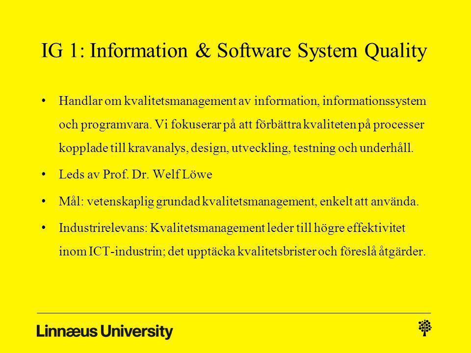 IG 1: Information & Software System Quality Handlar om kvalitetsmanagement av information, informationssystem och programvara.