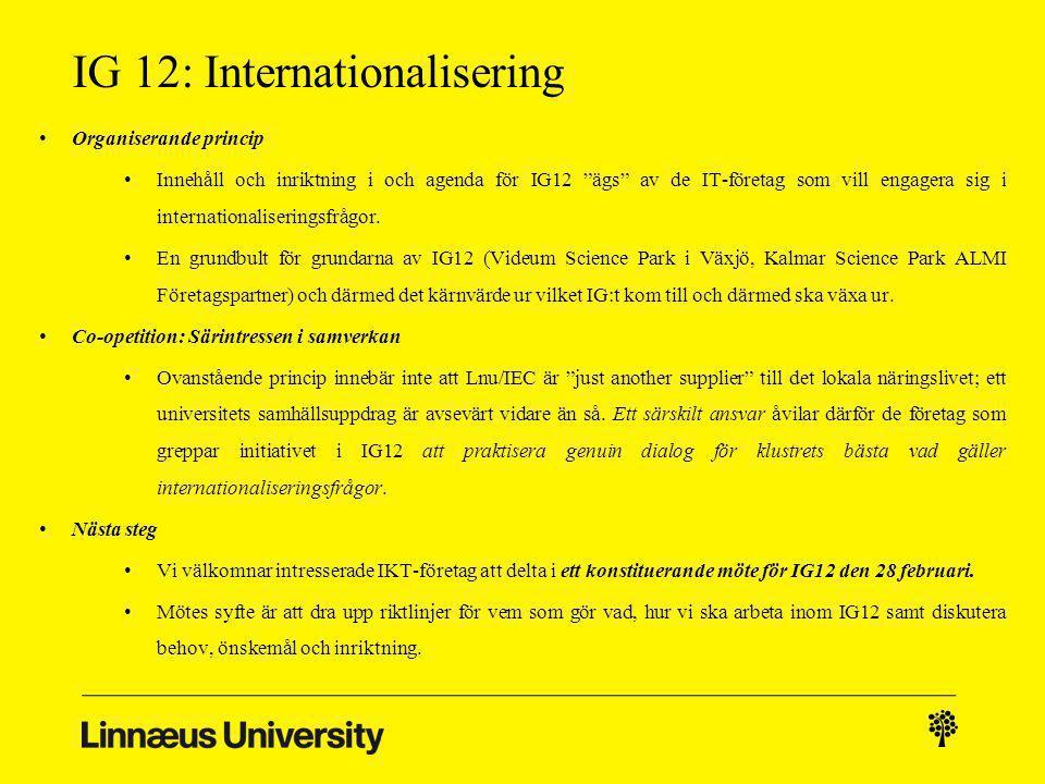 IG 12: Internationalisering Beskrivning: IG 12 är en plattform för Småländska IT-företag för att öka förståelsen för import- och exportfrågor.