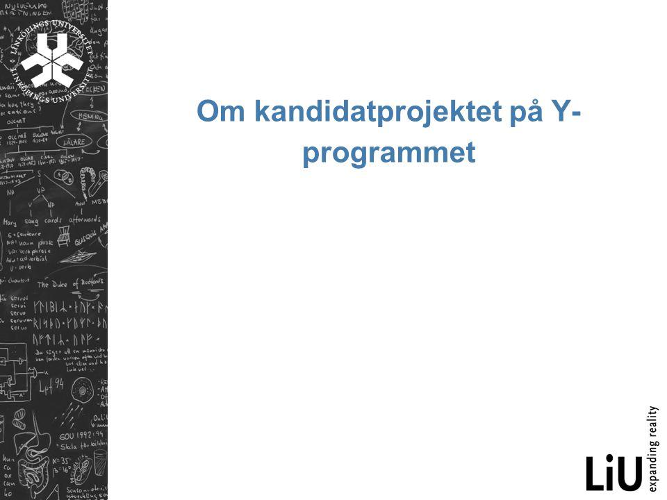 Om kandidatprojektet på Y- programmet